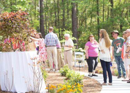 Thumbnail for the post titled: Aromi Hybrid Azalea Garden Opening